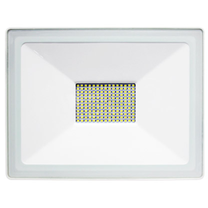 Ensa LFL-E50-C Residential 50W 5000K LED Flood Light